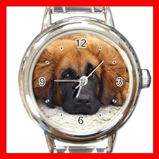 Leonberger DOG Pet Animal Round Italian Charm Wrist Watch 326