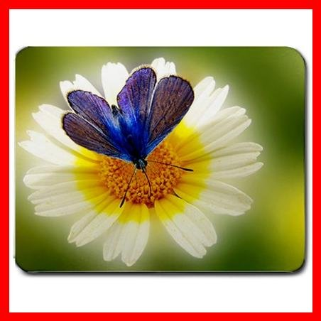 Blue Butterfly On Flower Mouse Pad MousePad Mat 034