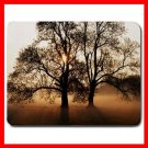 Tree Sunshine Nature Art Fun Mouse Pad MousePad Mat 047