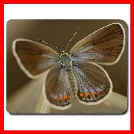 Butterfly Art Leisure Hobby Mouse Pad MousePad Mat 059