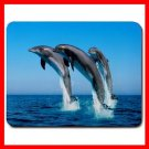 Dolphins Leaping Aquatic Fun Mouse Pad MousePad Mat 087