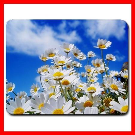 Spring Daisies Flower Hobby Mouse Pad MousePad Mat 100