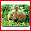 Bunny Rabbit Cute Animal Fun Mouse Pad MousePad Mat 122