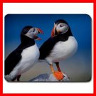 A Pair Of Puffins Wild Bird Mouse Pad MousePad Mat 130
