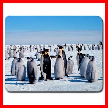 Emperor Penguins Bird Animal Mouse Pad MousePad Mat 144