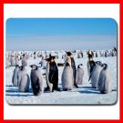 Emperor Penguins Bird Animal Mouse Pad MousePad Mat 144