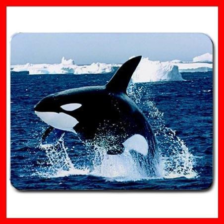 Emerging Killer Whale Animal Mouse Pad MousePad Mat 145