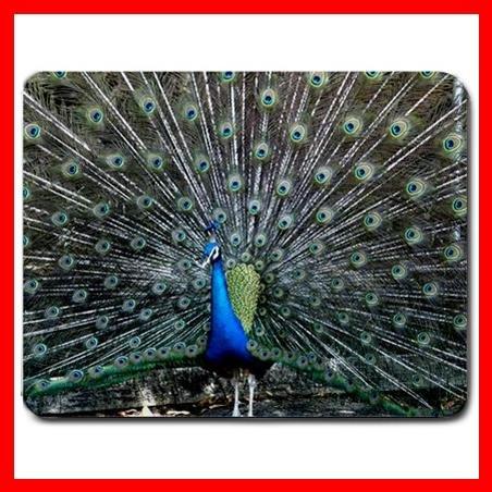 Peacock Wildlife Bird Animal Mouse Pad MousePad Mat 153