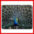 Peacock Wildlife Bird Animal Mouse Pad MousePad Mat 153
