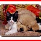 Cat Dog Friendship Animal Mouse Pad MousePad Mat 189