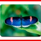 Blue Butterfly Fly Insect Hobby Mouse Pad MousePad Mat 190