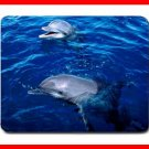 Frolicking Dolphins Animal Mouse Mouse Pad MousePad Mat 197