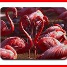 Pink Flamingo Wildlife Bird Mouse Mouse Pad MousePad Mat 205