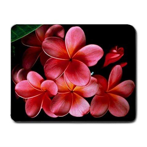 Pink Plumerias Frangipani Flower Fun Mouse Pad MousePad Mat 239
