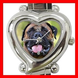 Bullmastiff Dog Pet Hobby Italian Charm Wrist Watch 061