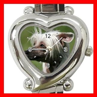 Chinese Crested Dog Pet Hobby Italian Charm Wrist Watch 066