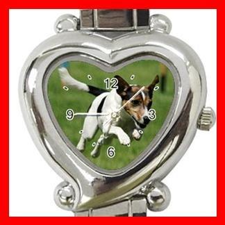 Jack Russell Dog Pet Hobby Italian Charm Wrist Watch 078