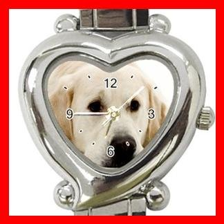 Labrador Dog Pet Hobby Italian Charm Wrist Watch 083