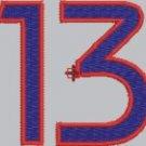 1806 Digit 13