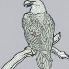 1814 eagle (DST)