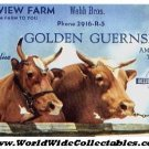 OLD Dairy Farm Milk Cows ink blotter GOLDEN GUERNSEY pictorial