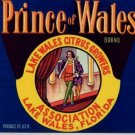 Prince of Wales Lake Wales Florida Citrus Box Label