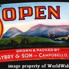 Beautiful OLD S. Carolina OPEN SKY PEACH Basket Label
