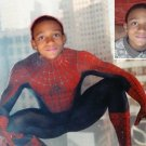 Custom 8x10 Photo to Art Picture - spiderman