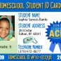 Free 2010 Student Homeschool ID Badge set. Field Trip & Wallet ID included.