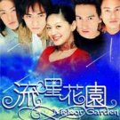 Taiwan Drama Dvd: Meteor garden 1 and 2, english subtitles