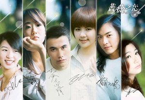 Taiwan drama dvd: The rose, english subtitles