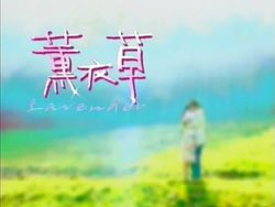 Taiwan drama dvd: Lavender, english subtitles