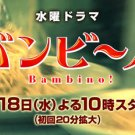 Japanese drama dvd: Bambino, english subtitles