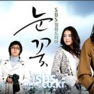 Korean drama dvd: Snow flower, english subtitles