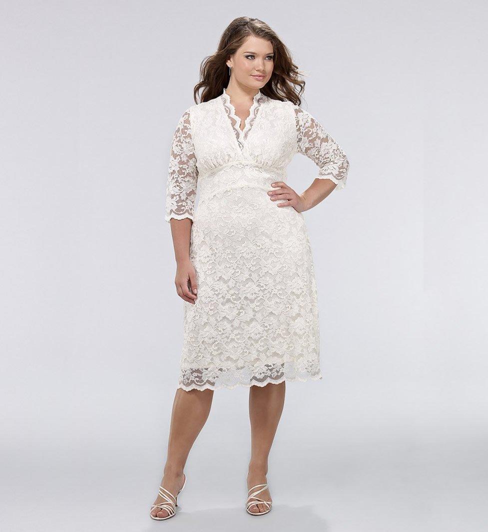 Darius Cordell Fashion Short Wedding Dresses for Plus Size Women