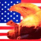 Eagle with Tear on American Flag  3' x 5' Flag
