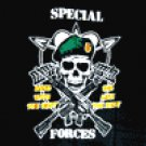 Special Forces Flag 3' x 5' Flag