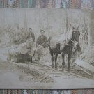 Vintage photo postcard loggers and mule
