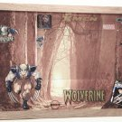 Super Hero Picture Frame 3285 Wolf