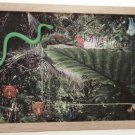 Jungle Picture/Photo Frame 9250