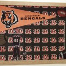 Cincinnati Pro Football Picture/Photo Frame 10-295