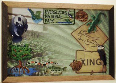 Everglades National Park Picture/Photo Frame 31-033