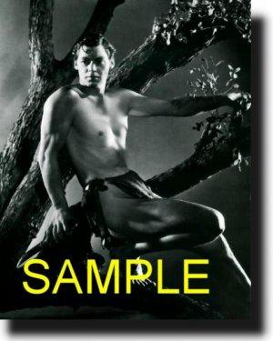 16X20 JOHNNY WEISSMULLER 1939 RARE VINTAGE PHOTO PRINT