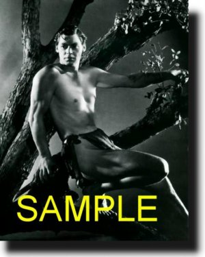 8X10 JOHNNY WEISSMULLER 1939 RARE VINTAGE PHOTO PRINT