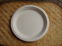 "9"" White Bagasse Plate"