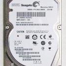 OEM HP COMPAQ G56 G62 CQ56 CQ62 250GB 5400RPM SEAGATE HD HARD DRIVE 9HH132