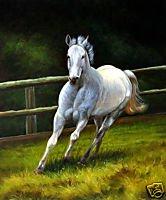 White Stallion on Canvas  Horse Lover's ArtOil Painting on Canvas (22240821914)