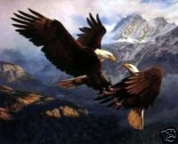 Eagles Soar Oil Painting on Canvas  (22232328125)
