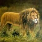 King of the Jungle Oil Painting on Canvas  (22232297329)
