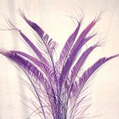 "50 Peacock Sword Feathers Bleached & dyed PLUM PURPLE 20-25"" L"